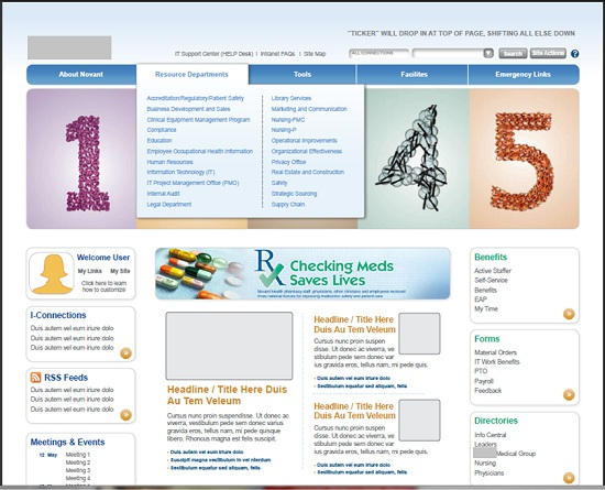 Best Home Page Design: Intranet Examples
